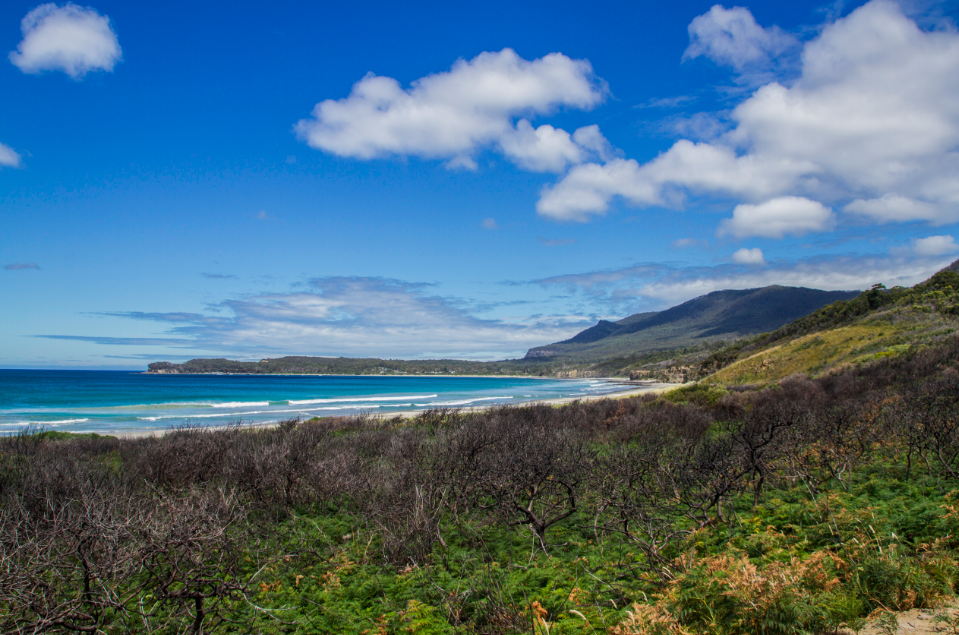 Pirates Bay - Eaglehwak - Tasmania / Credits : iamabackpacker